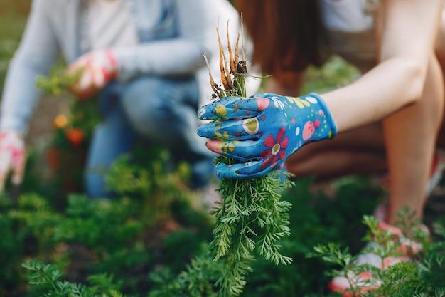 Piękne kobiety pracują w ogrodzie