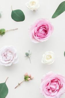 Piękne kolorowe kwiaty w tle