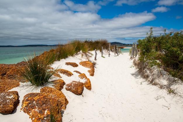 Piękne krajobrazy formacji skalnych i krzewów na piaszczystej plaży pod pochmurnym niebem