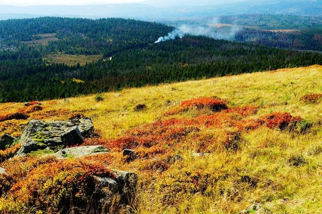 Piękne krajobrazy gór harz i lasów w niemczech jesienią