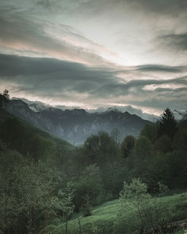 Piękne krajobrazy lasu i zielonych wzgórz ze skalistymi górami i niesamowitymi chmurami