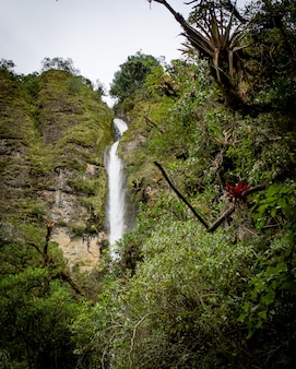 Piękne krajobrazy lasu z niesamowitymi iskrzącymi wodospadami