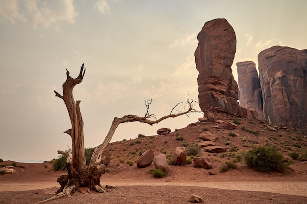 Piękne krajobrazy mesas w parku narodowym bryce canyon, utah, usa