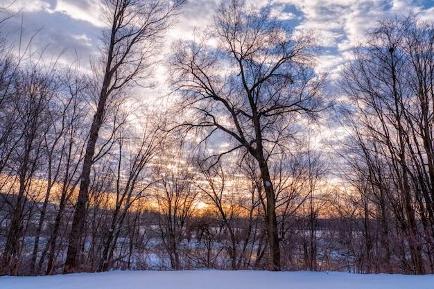 Piękne krajobrazy wzgórz wsi w okresie zimowym