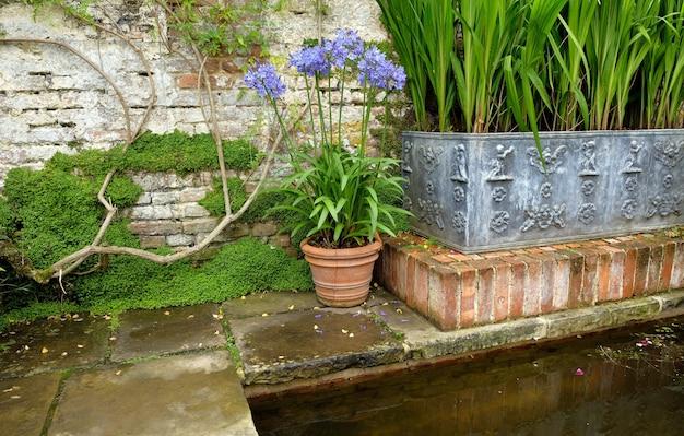 Piękne kwiaty, drzewa i rośliny oraz architektura ogrodowa w sissinghurst caslte gardens