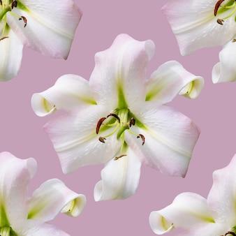 Piękne kwiaty lilii. jednolity wzór kwiat lilii. kwiatowe tło naturalne.
