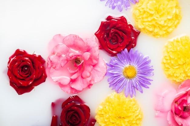 Piękne Kwiaty W Kąpieli Mlecznej. Pojęcie Zabiegów Spa, Relaks, Zabiegi Spa, Terapia Premium Zdjęcia