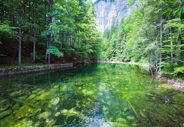 Piękne letnie alpejskie jezioro toplitzsee szmaragdowo zielony widok, austria