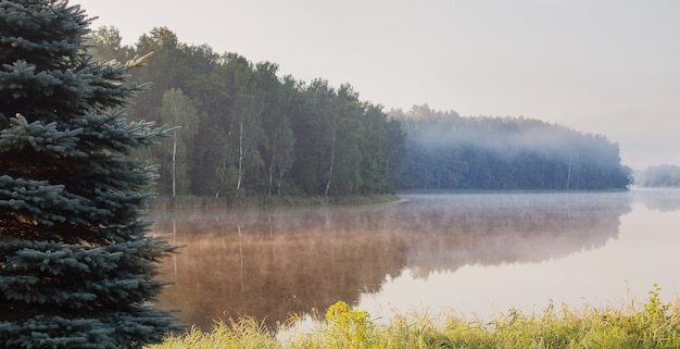 Piękne letnie jezioro rano