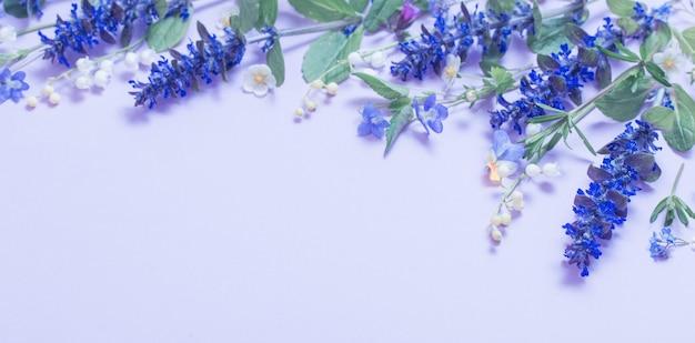 Piękne letnie kwiaty na niebieskim tle