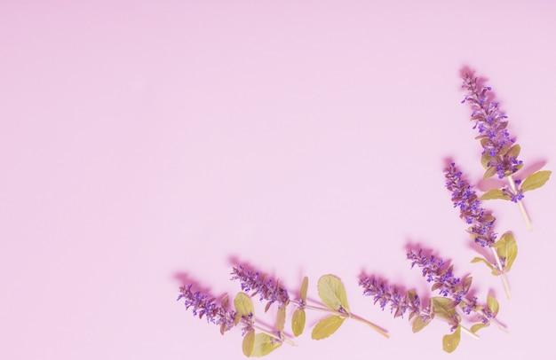 Piękne letnie kwiaty na różowym tle