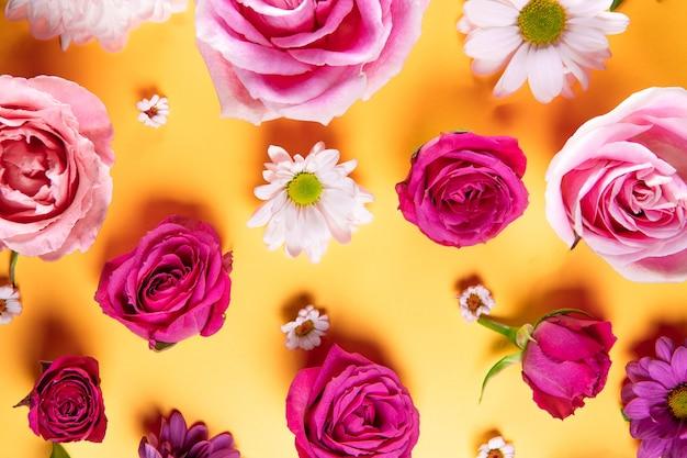 Piękne letnie kwiaty. różowe róże i białe stokrotki widok z góry.
