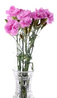 Piękne letnie kwiaty w wazonie, na białym tle