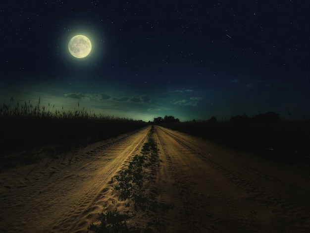 Piękne magiczne nocne niebo z księżycem i gwiazdami oraz droga oddalająca się w oddali z zieloną trawą