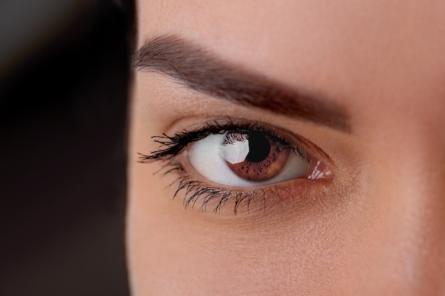 Piękne makro kobiece oko z ekstremalnie długimi rzęsami i makijażem czarnej wkładki. doskonały kształt makijażu i długie rzęsy. kosmetyki i makijaż.