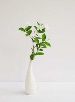 Piękne małe białe kwiaty gardenii w nowoczesnym wazonie ustawionym na drewnianej powierzchni ściany stołu z miejscem na kopię, martwa natura w delikatnym odcieniu
