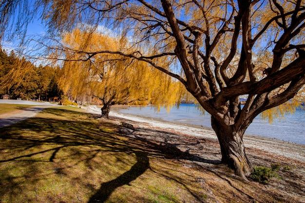 Piękne malownicze jezioro wanaka południowej ziemi nowa zelandia