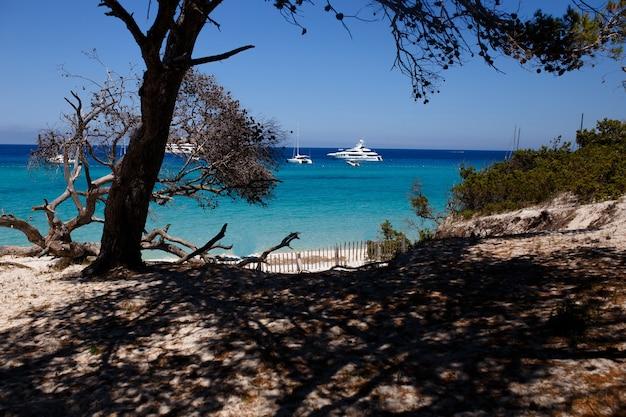 Piękne miejsca z korsyki we francji, jasnoniebieskie tło z morskim krajobrazem. widok poziomy.