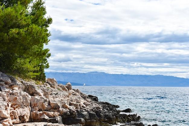 Piękne morze adriatyckie w chorwacji. zielona sosna, skały, błękitna woda, słoneczna pogoda, fajnie