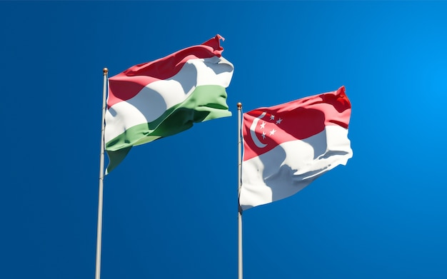 Piękne narodowe flagi państwowe węgier i singapuru razem