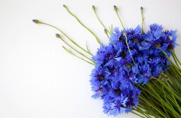 Piękne niebieskie dzikie kwiaty kwitnące. bukiet z blue centaurea cyanus na białym tle