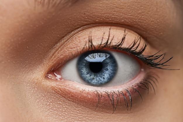 Piękne niebieskie oko z długimi rzęsami. kobiece oko z bliska