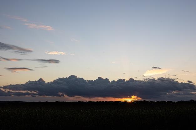 Piękne niebo o zachodzie słońca nad polem kukurydzy