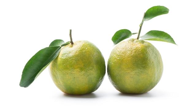 Piękne niedojrzałe zielone mandarynki z liśćmi na białym tle na białym tle, ścieżkę przycinającą, wyciąć, z bliska.