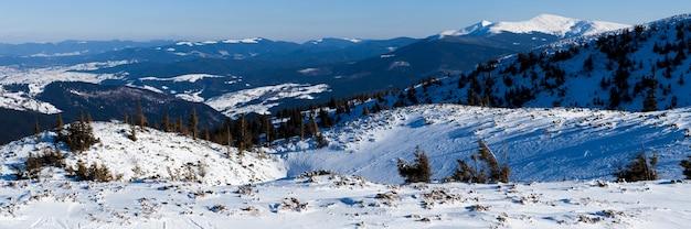 Piękne ośnieżone stoki z jodłami pokrytymi śniegiem stoją na tle błękitnego nieba w słoneczny zimowy dzień