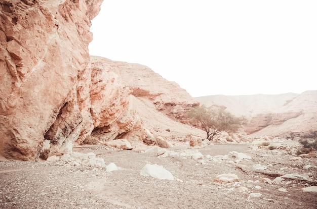 Piękne piaskowcowe falezy czerwony jar w górach południowy eilat, izrael.