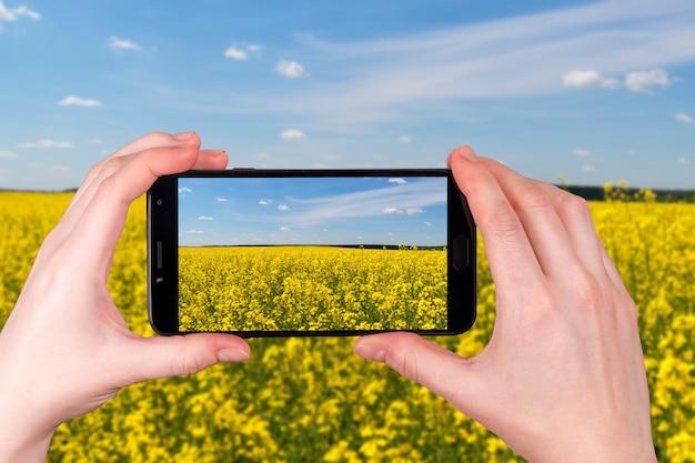 Piękne pola rzepaku w słoneczny dzień. turysta robi zdjęcie