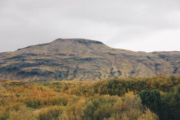 Piękne pole z wysokimi górami i wzgórzami