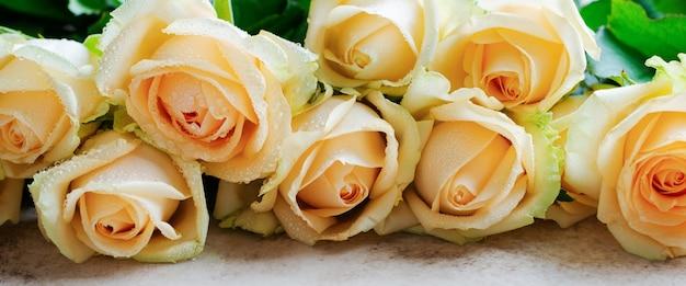 Piękne pomarańczowe róże na jasnej betonowej powierzchni. kompozycja pozioma. tekst z gratulacjami z okazji walentynek lub ślubu.