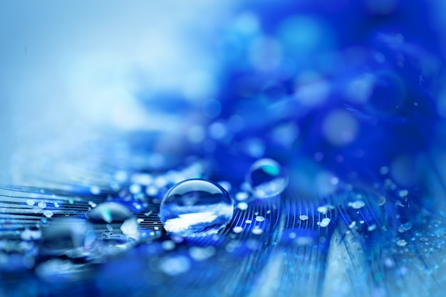 Piękne przezroczyste krople wody lub woda deszczowa na miękkim tle.
