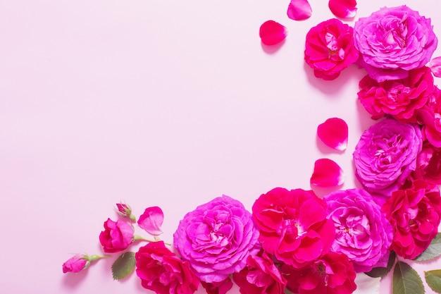 Piękne róże na różowym tle papieru