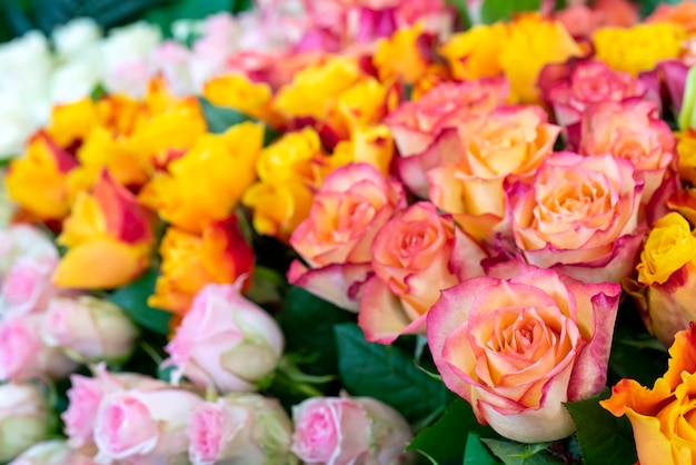 Piękne róże na ślub i zaręczyny.