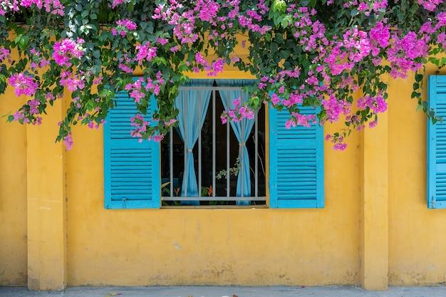 Piękne różowe kwiaty i okno z niebieskimi okiennicami na żółtym starym murze na ulicy