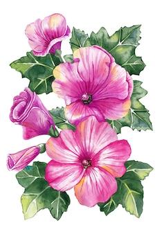 Piękne różowe kwiaty lavatera. delikatny bukiet kwiatów. akwarela.