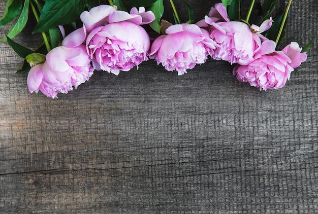 Piękne różowe kwiaty piwonii