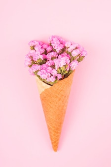 Piękne różowe kwiaty w rożku waflowym do lodów na jasnym różowym tle.