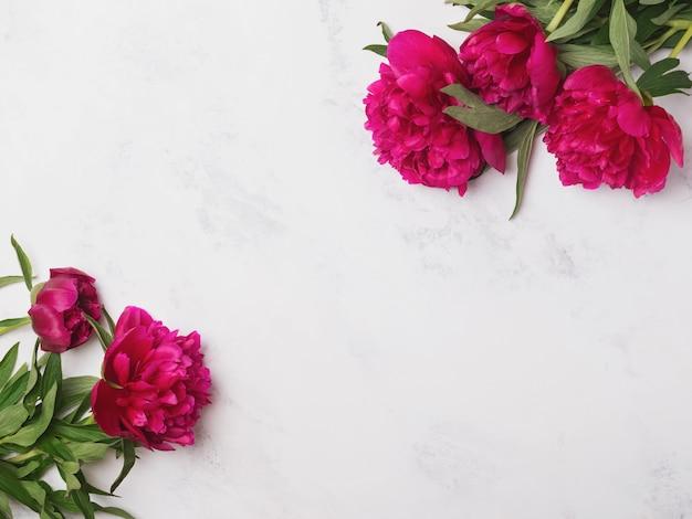 Piękne różowe piwonie na marmurze