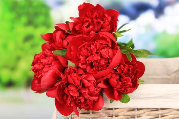 Piękne różowe piwonie na tle przyrody