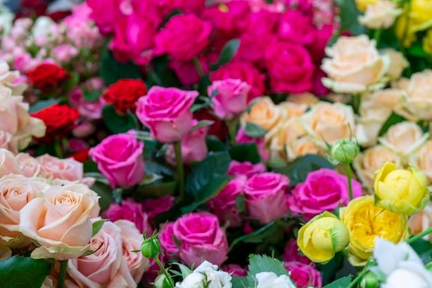 Piękne różowe róże. kwiatowy uroczysty naturalne tło.