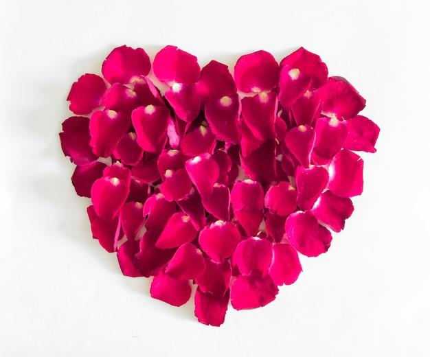 Piękne serce różowe płatki róż