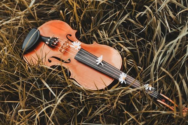 Piękne skrzypce leżą na trawie z kwiatami. zdjęcie wysokiej jakości
