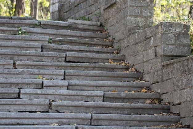 Piękne Stare Kamienne Schody Diabaz Z Naturalnego Ciemnego Kamienia Z Kamiennymi Schodami W Letnim Parku Premium Zdjęcia