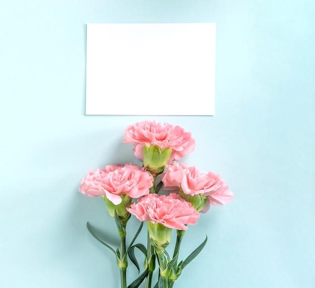 Piękne świeże kwitnące goździki na białym tle na jasnym niebieskim tle