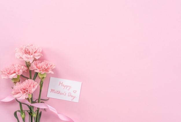 Piękne, świeże kwitnące goździki w różowym kolorze na białym tle na jasnym różowym tle, dzień matki dzięki koncepcji projektu, widok z góry, leżał płasko, kopia przestrzeń, zbliżenie, makieta