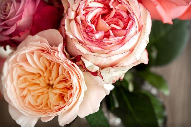 Piękne świeże róże o różnych kolorach z bliska