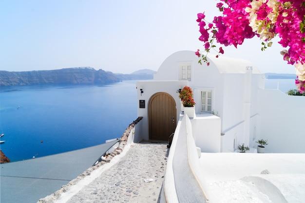Piękne szczegóły typowego domu na wyspie santorini z białymi ścianami i błękitnymi wodami morza egejskiego z kwiatami